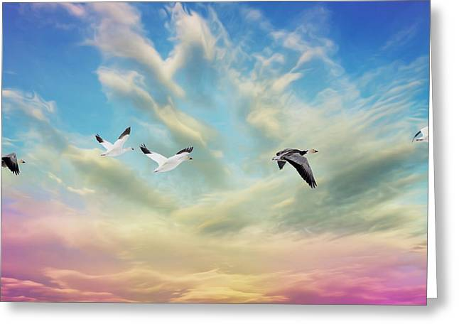 Snow Geese Over New Melle Greeting Card by Bill Tiepelman