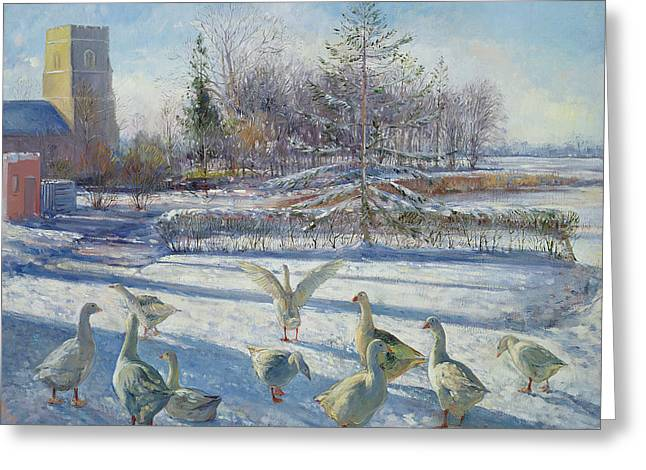 Snow Geese, Winter Morning Greeting Card