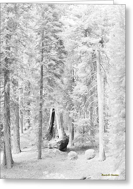 Snow Impressions Greeting Card by Angela Stanton