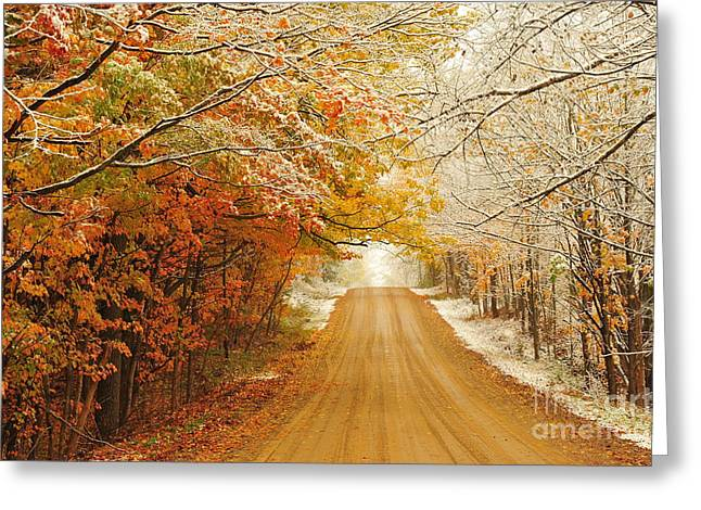 Snow In Autumn 40 Greeting Card by Terri Gostola