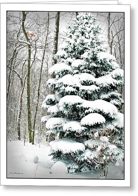 Snow In Ohio Greeting Card by Joan  Minchak