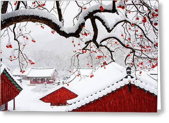 Snow In Temple Greeting Card