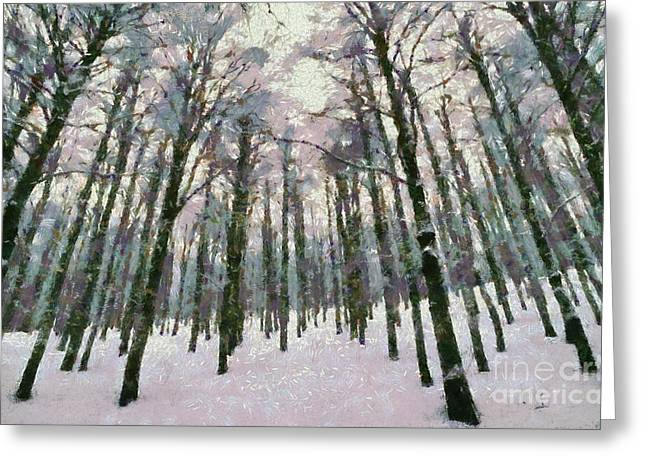 Snow In The Forest Greeting Card by George Atsametakis