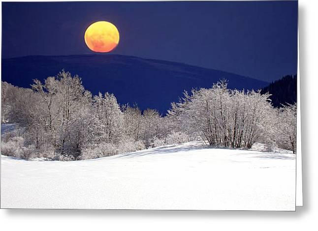 Snow In The Moonlight 01 Greeting Card by Giorgio Darrigo