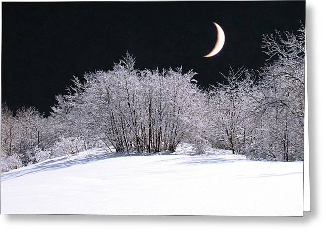 Snow In The Moonlight Greeting Card by Giorgio Darrigo