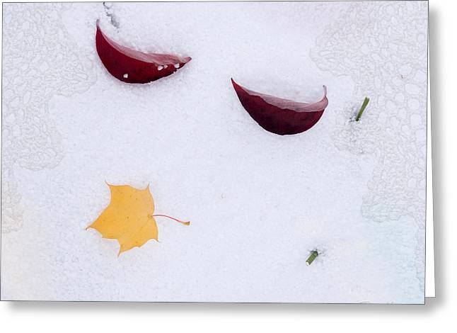 Snow Kissed Greeting Card
