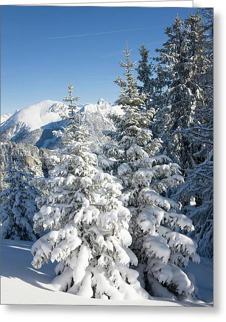 Snow Landscape In The Bernese Alps Greeting Card