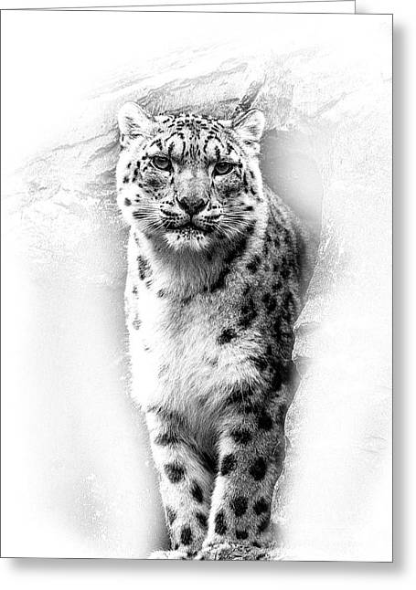 Snow Leopard 2 Greeting Card