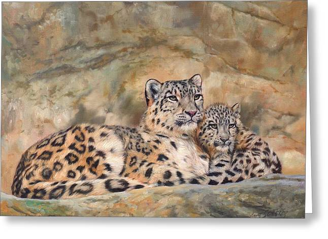 Snow Leopards Greeting Card by David Stribbling
