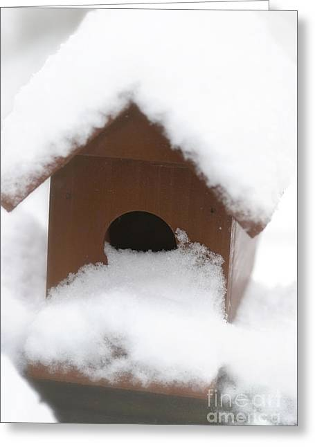 Snow On Bird House Greeting Card by Birgit Tyrrell