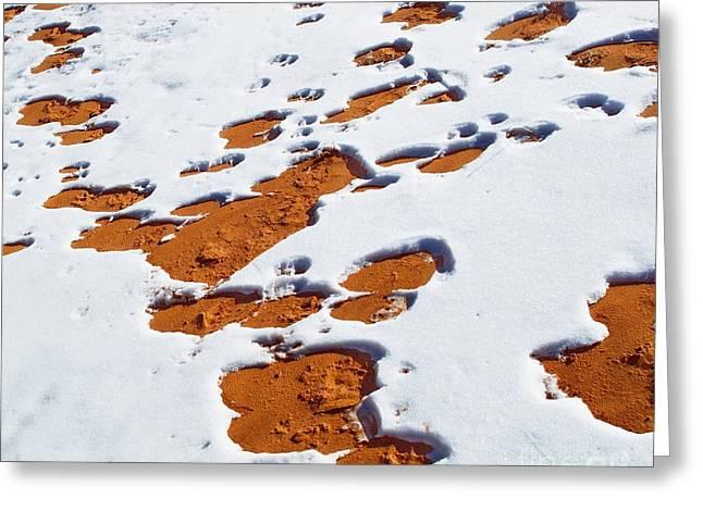 Snow On Dunes Greeting Card