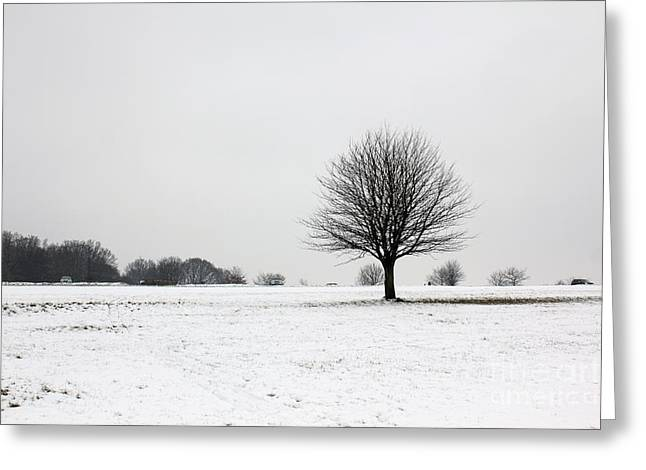 Snow On Epsom Downs Surrey England Uk Greeting Card