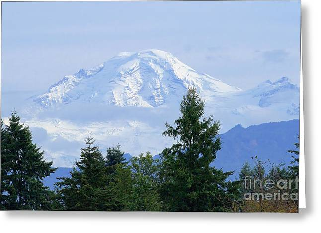 Snow On Mount Baker Greeting Card by Sharon Talson