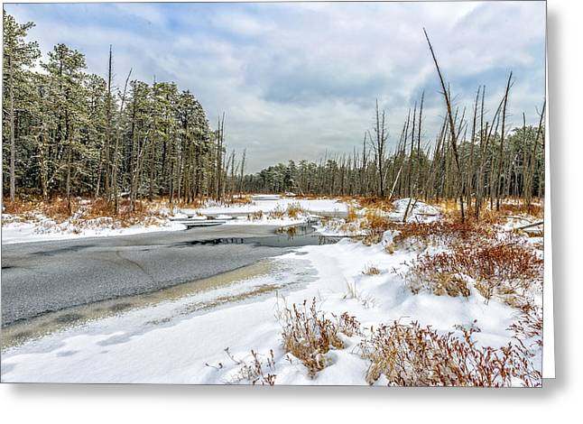 Greeting Card featuring the photograph Snow On Roberts Branch by Louis Dallara