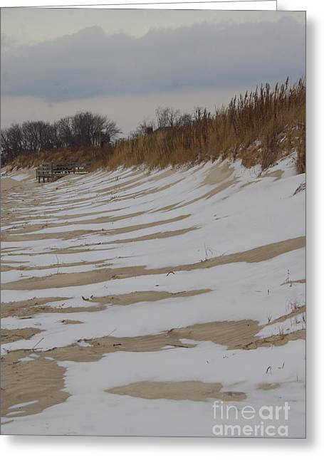 Snow On The Beach Greeting Card by Tannis  Baldwin