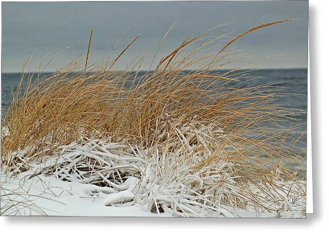 Snow On The Dunes Greeting Card