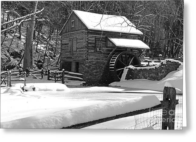 Snow On The Fence In Black And White Greeting Card by Paul Ward