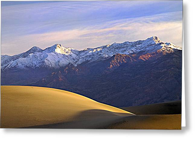 Snow On The Grapevine Range.  Greeting Card