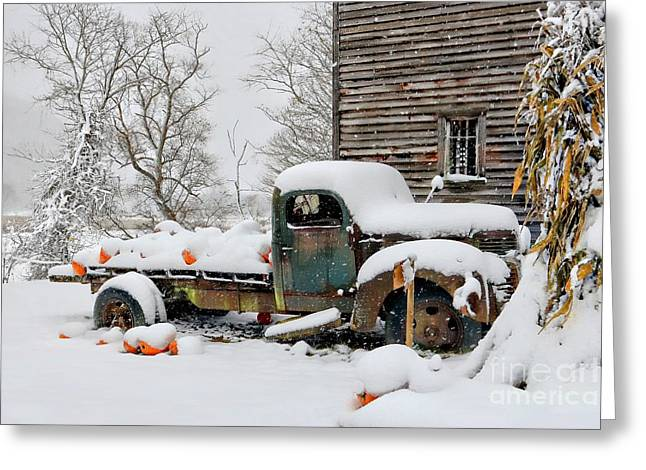 Snow On The Pumpkin Harvest Greeting Card by Benanne Stiens