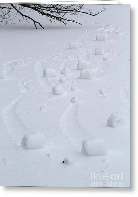 Snow Rollers Greeting Card
