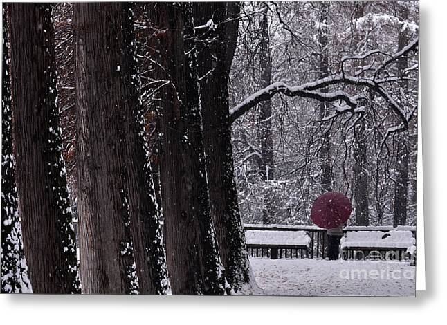 Greeting Card featuring the photograph Snow by Simona Ghidini
