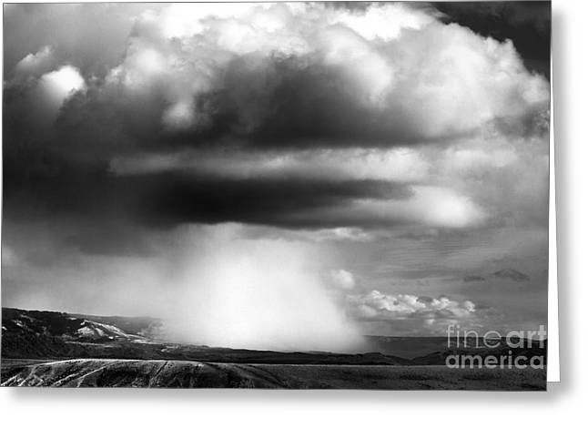 Snow Squall In Black And White Greeting Card by Edward R Wisell