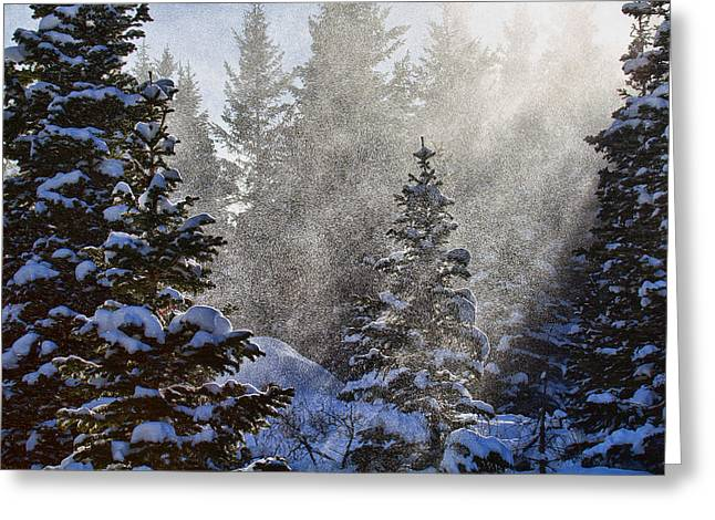 Snow Squalls Greeting Card by Jim Garrison