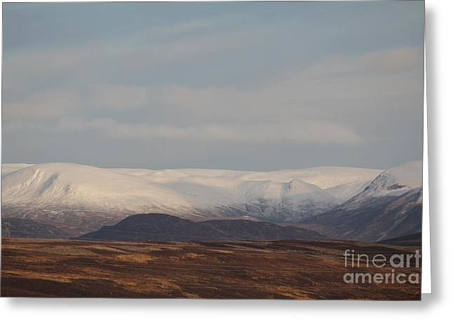 Snow Topped Mountains Greeting Card by David Grant