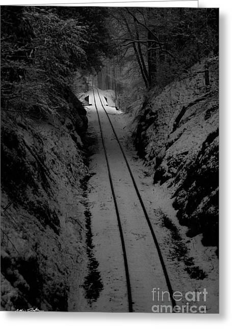 Snow Tracks - 2010 Greeting Card