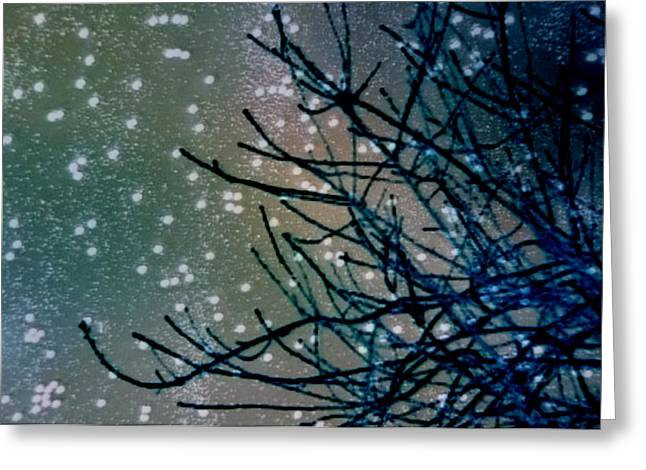 Snow Twigs Greeting Card by Jan Amiss Photography