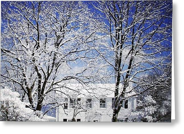 #snow #winter #house #home #trees #tree Greeting Card