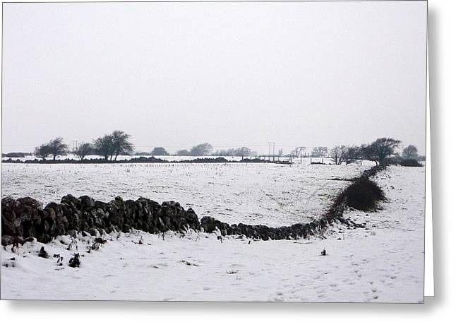 Snow Winter In Galway Ireland Greeting Card by Patrick Dinneen