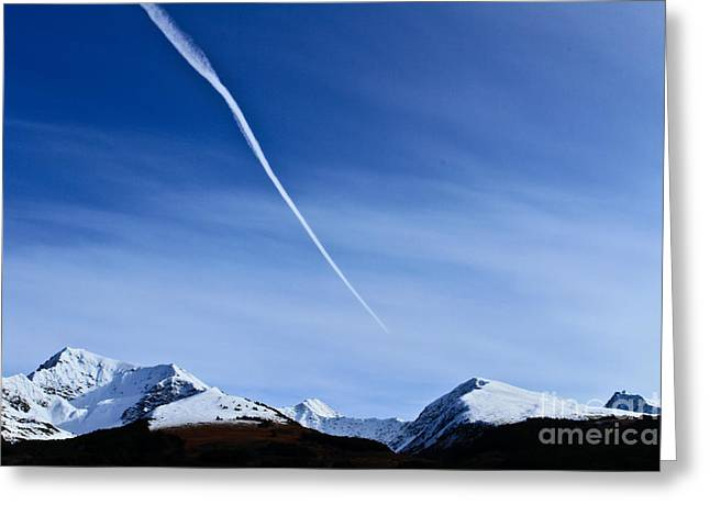 Snowbird Express Greeting Card by Terry Cotton