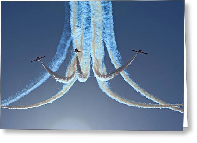 Snowbirds In A Dive Greeting Card by Randy Hall