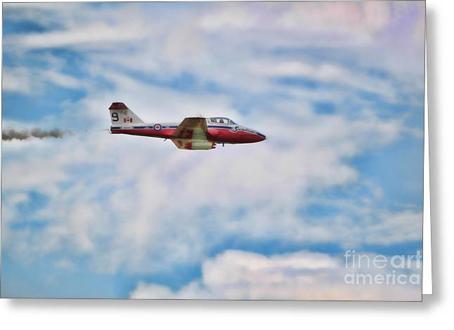 Snowbirds Number 9 Greeting Card by Cathy  Beharriell