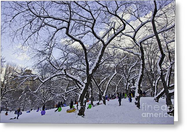 Snowboarders In Central Park Greeting Card by Madeline Ellis
