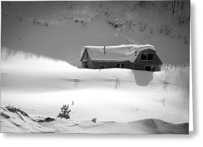 Snowbound Greeting Card by Ron White