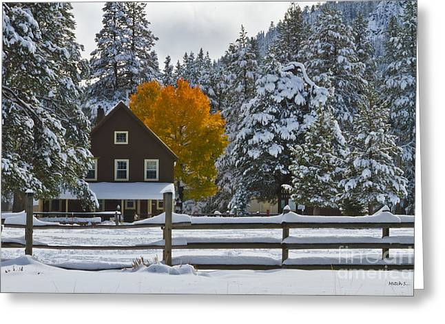 Snowed In At The Ranch Greeting Card by Mitch Shindelbower