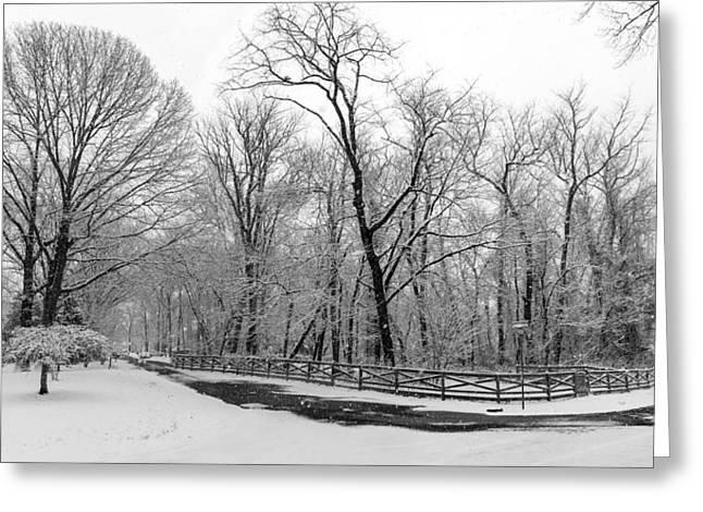 Snowfall Pano Greeting Card by Brian Wallace