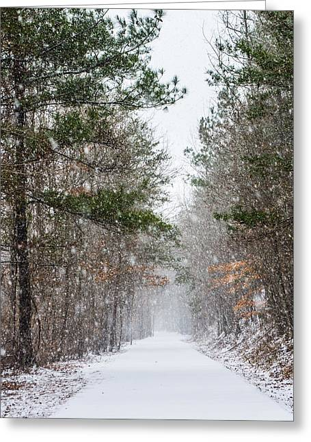 Snowfall Greeting Card by Parker Cunningham