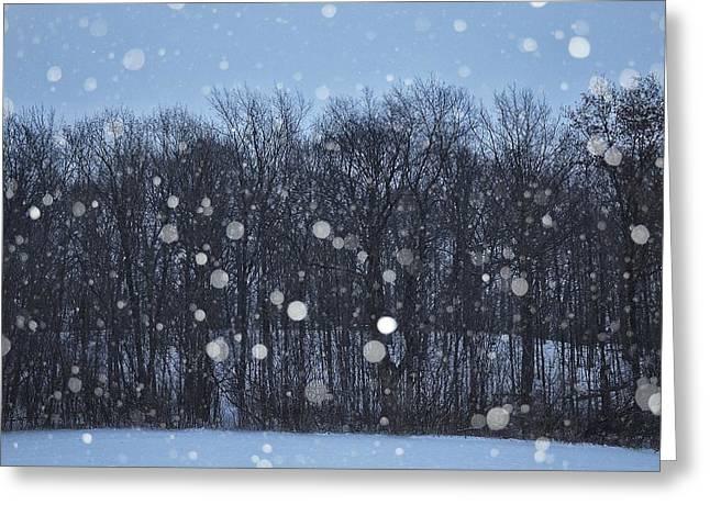 Snowfall Treeline Greeting Card