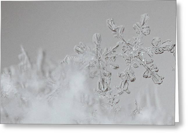 Snowflake 6 Greeting Card