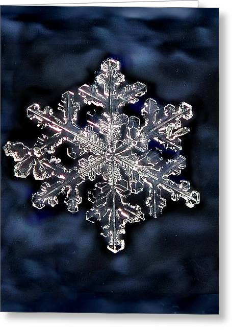 Snowflake Blue Greeting Card by Lorella  Schoales
