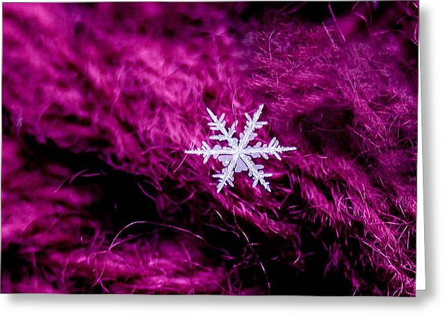 Snowflake On Magenta Greeting Card