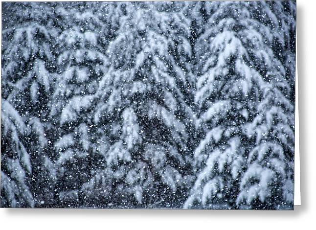 Snowflakes Greeting Card by Dennis Bucklin