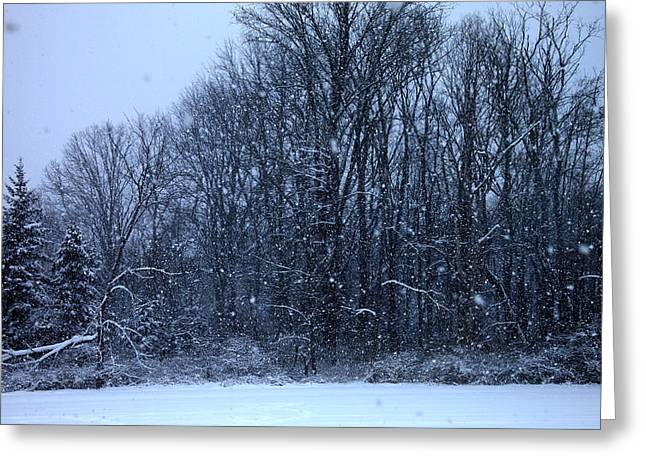 Snowing Greeting Card by Barbara Giordano