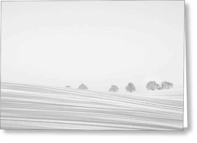 Snowlines Greeting Card