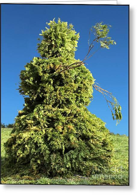 Snowman Bush Topiary Christmas Card Greeting Card by Adam Long