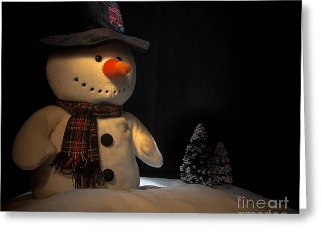 freddrick the snowman 304 principles of implementing duty of research papers age discrimation a  history of studio 54 the legendary nightclub freddrick the snowman sony vaio .