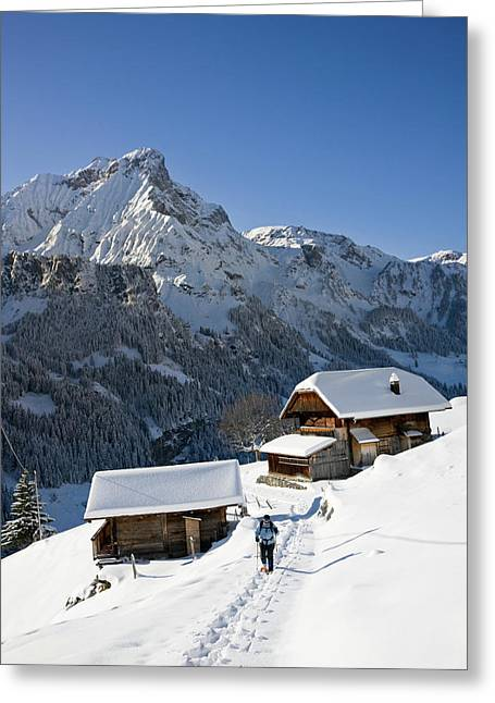 Snowshoeing In Griesalp And Steineberg Greeting Card by Martin Zwick